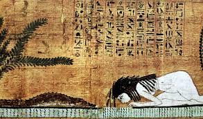 papiro-anima