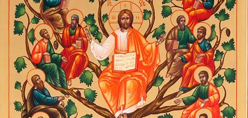 Gesù-vera-vite1