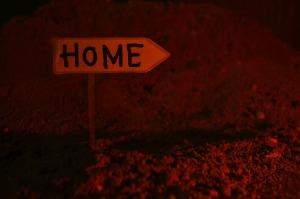 encuentra tu camino de regreso